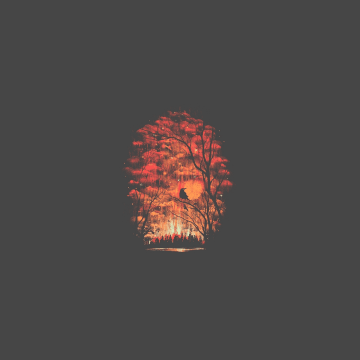 4K Minimalistic Phone - Android, iPhone, Desktop HD Backgrounds / Wallpapers (1080p, 4k) HD Wallpapers (Desktop Background / Android / iPhone) (1080p, 4k)