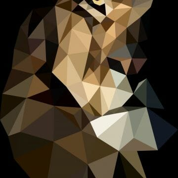 Download wallpaper 3840x2400 polygon, lion, colorful, black - Android / iPhone HD Wallpaper Background Download HD Wallpapers (Desktop Background / Android / iPhone) (1080p, 4k)