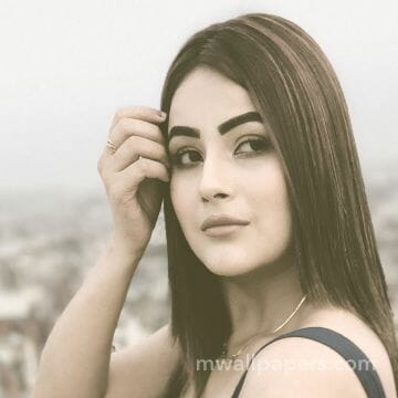 Shehnaz Kaur Gill HD Wallpapers (Desktop Background / Android / iPhone) (1080p, 4k)