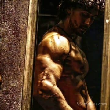 Tiger Shroff HD Wallpapers (Desktop Background / Android / iPhone) (1080p, 4k)