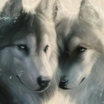 Wolves in Love Wallpaper - Android / iPhone HD Wallpaper Background Download HD Wallpapers (Desktop Background / Android / iPhone) (1080p, 4k)